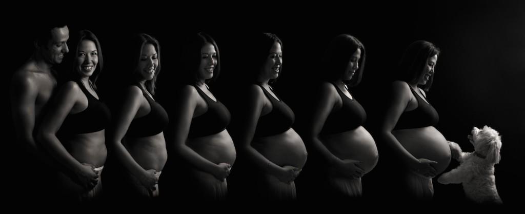 belly bump evolution -pregnancy